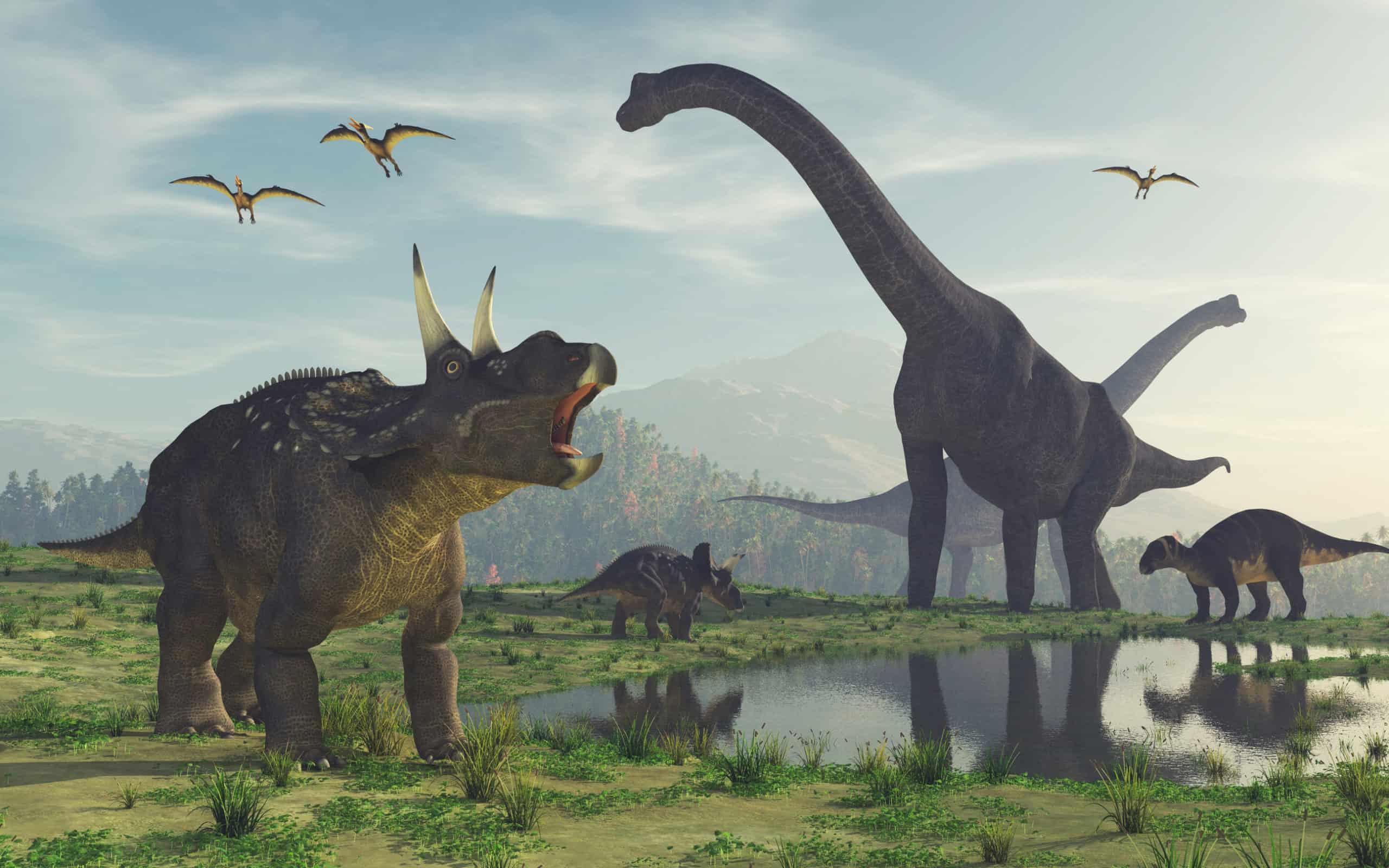Dinosaur Board Games